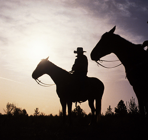 Adventure package-horseback riding